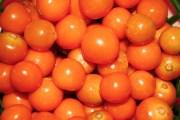 mercado uchuva