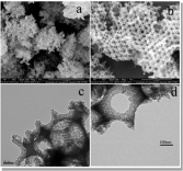 heirachical-nanocomposite