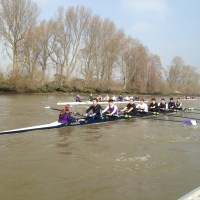 Novice men training on Tideway, 2016