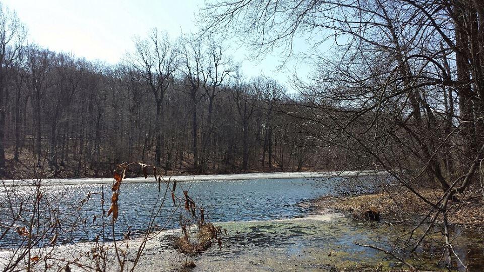 Lake Surprise in Winter, Union County NJ