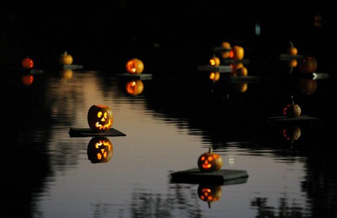 Pumpkin Sail