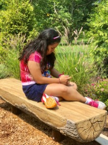 sensory trail sitting on log bench