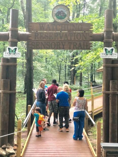sensory trail - walking up entrance boardwalk