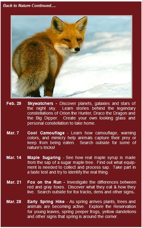 2020 Winter back to nature snip it pg.2