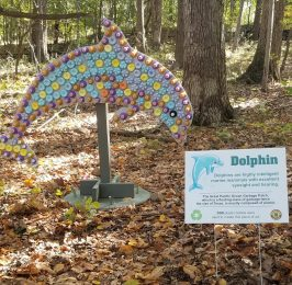 2020 recycled art wildlife walk dolphin.pdf