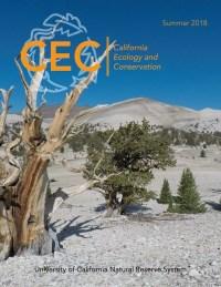 CEC Research