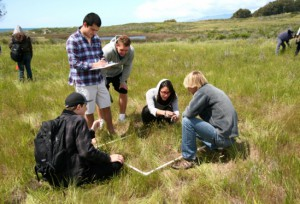 Students describing a sample plot along a transect at Coal Oil Point for their Measuring the Environment class. Image credit: Dar Roberts