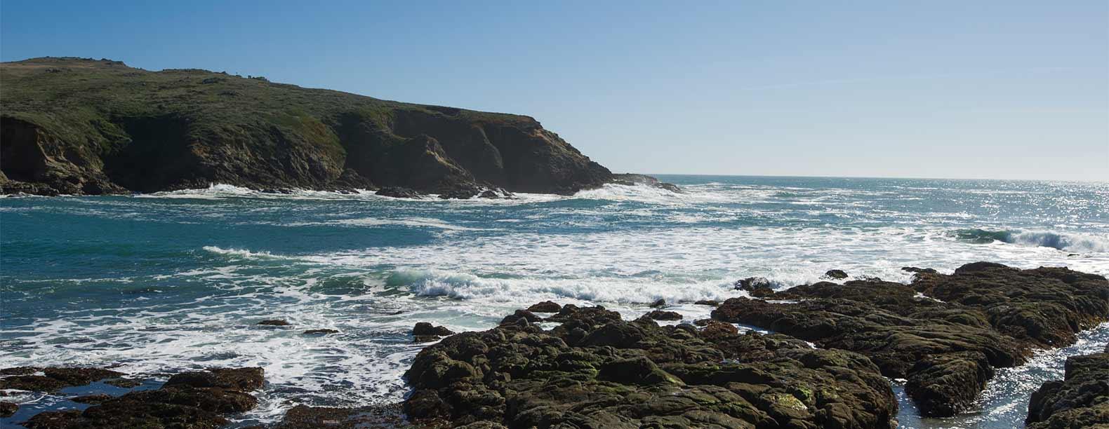 bodega-marine-reserve