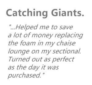 Catching Giants Testimonial