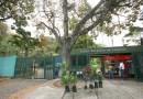Jardín Botánico de Caracas solicita ayuda para su rescate y mantenimiento
