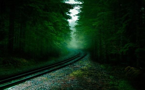 gambar pemandangan alam