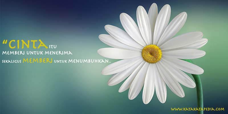 Gambar kata kata Mutiara cinta