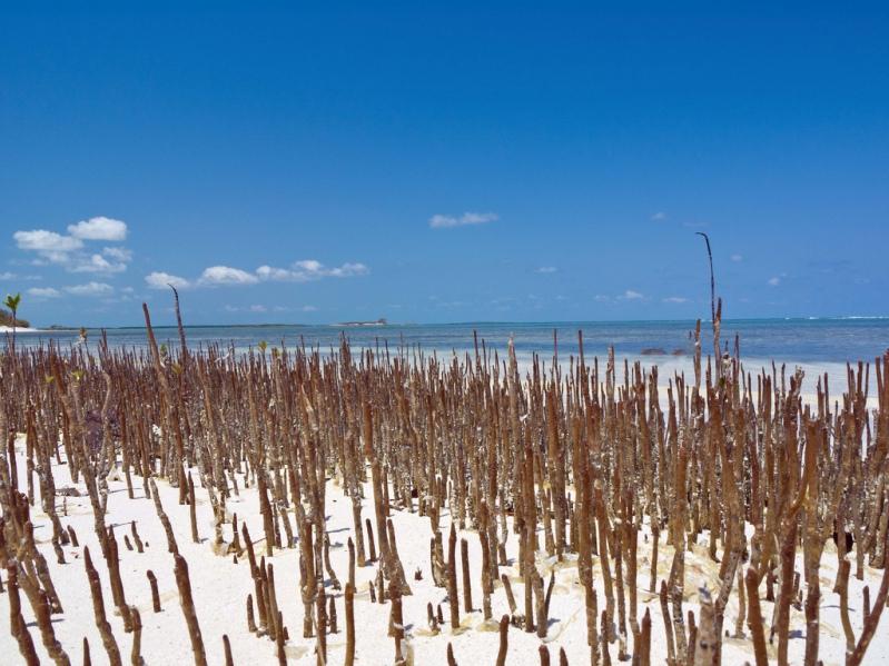 Пляжи острова Кайо-Санта-Мария. Куба. Фото