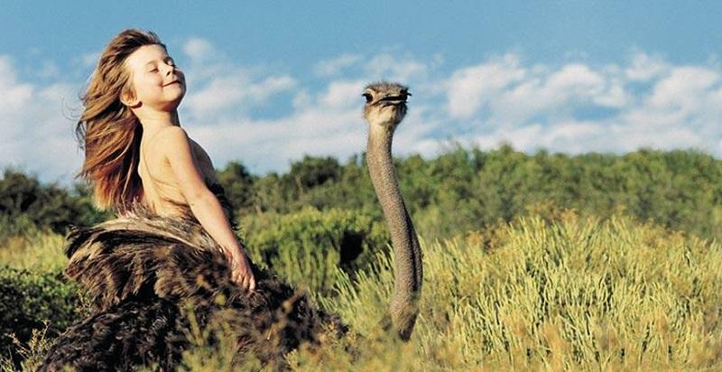 Типпи Дегре на страусе. Девочка-Маугли в Африке. Фото