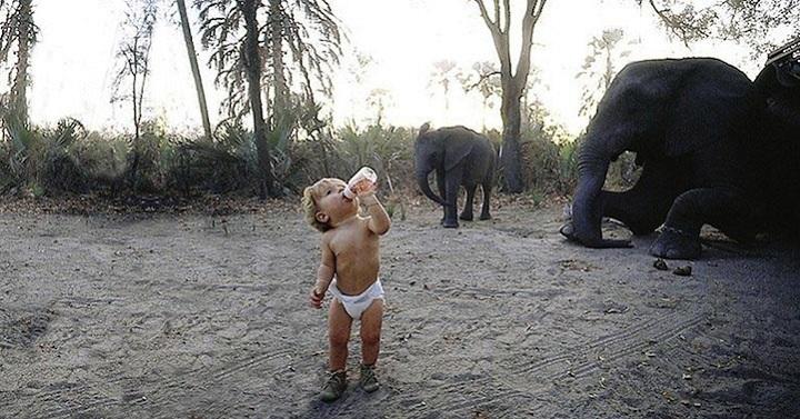 Типпи Дегре и слоны. Девочка-Маугли в Африке. Фото