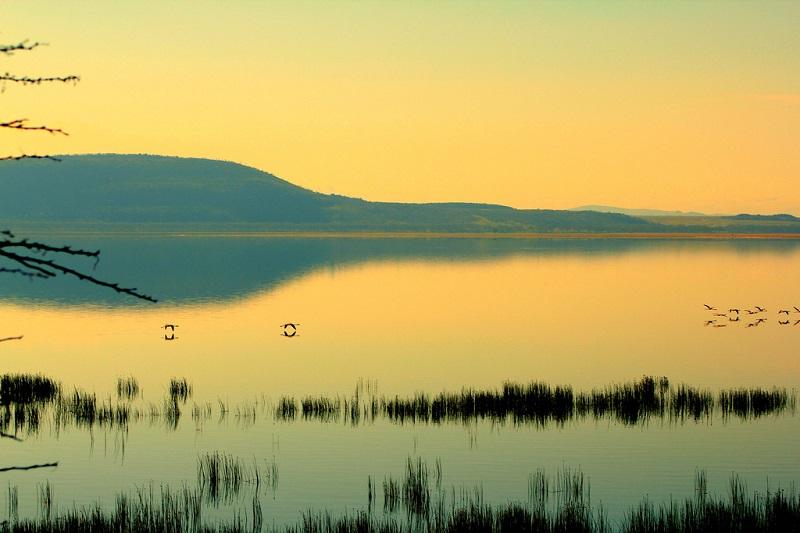 Национальный парк Озеро Накуру в Кении. Рассвет. Фото