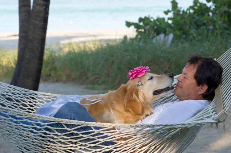 Танцующая собака Керри отдыхает с хозяином. Фото