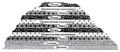 Что такое перегной, из чего он состоит и как приготовить в домашних условиях{q} Как самому приготовить компост и сделать хороший перегной Какие кислоты входят в состав перегноя.
