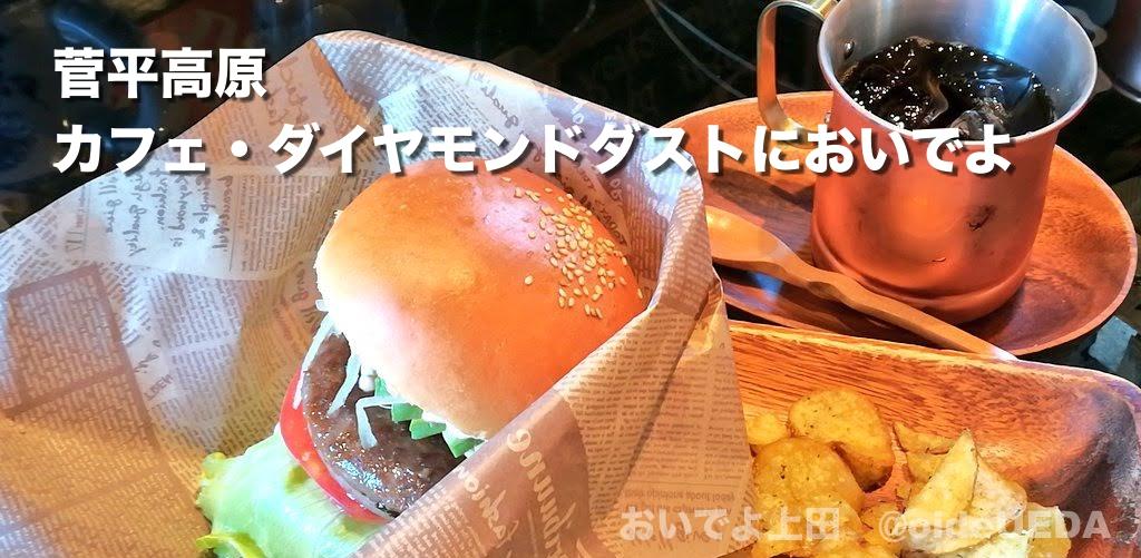 菅平高原 カフェ・ダイヤモンドダストにハンバーガーを食べにおいでよ。