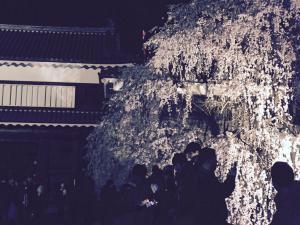 上田城跡公園 上田城千本桜まつり 櫓門 枝垂れ桜