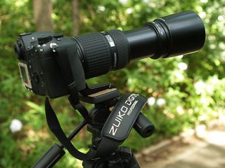 E1and50200.jpg
