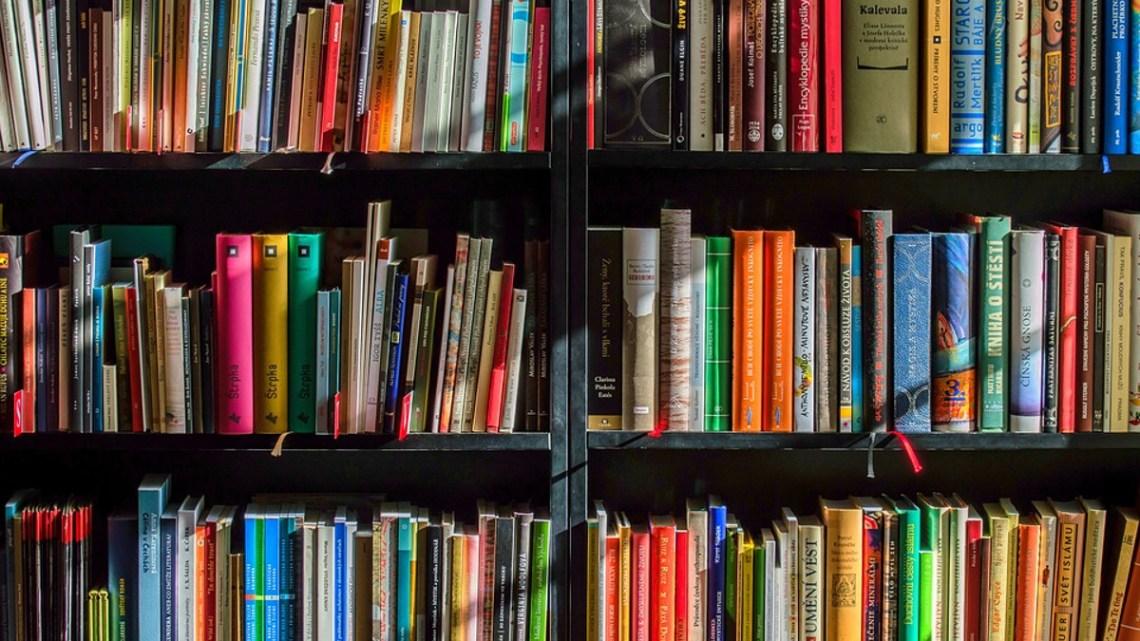 Ratsbücherei bietet kostenlosen Onleihe-Zugang während der Corona-Krise