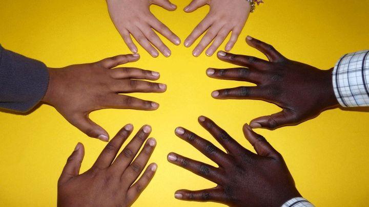 Online-Fortbildung für Pädagogische Mitarbeiter*innen an Grundschulen: Friedensbildung