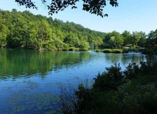 River Festival