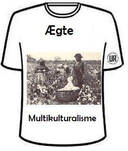 multikultur-shirt