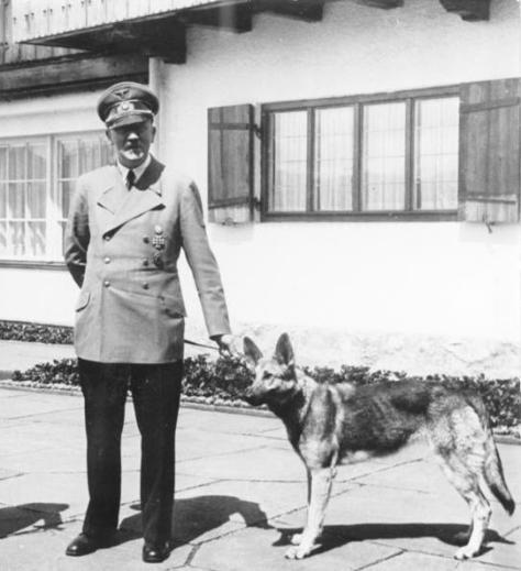 Adolf Hitler og Blondi, 14. juni 1942. Bundesarchiv, B 145 Bild-F051673-0059 / CC-BY-SA