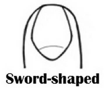 sword[1].jpg
