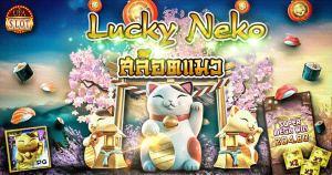 เกมสล็อตแมว Lucky Neko