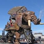 14_elephant