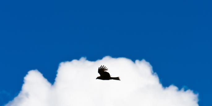 Pourquoi le ciel est bleu UFE Pérou