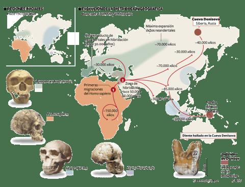 El origen de los Denisovanos