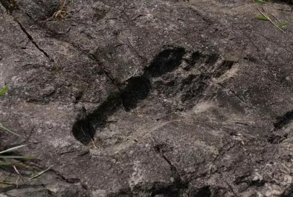 ancient giant footprint china