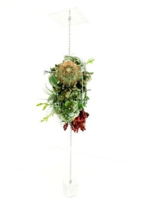 Botanical sculpture