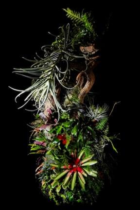 Botanical ashtray