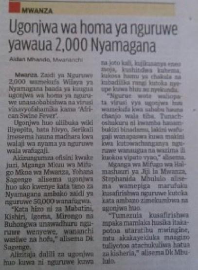 IMG 20151217 121026 220x300 - Zaidi ya Nguruwe 2,000 wafa kwa ugonjwa wa Homa ya Nguruwe Nyamagana