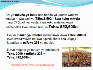 chicken management swahili 017 300x225 - Ufugaji wa kuku kwa njia ya kisasa