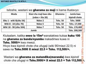 chicken management swahili 014 300x225 - Ufugaji wa kuku: Namna ya kuanza na mchanganuo wa mapato na matumizi