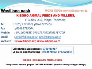 chicken management swahili 029 - Ufugaji wa kuku: namna ya kuanza na mchanganuo wa mapato na matumizi