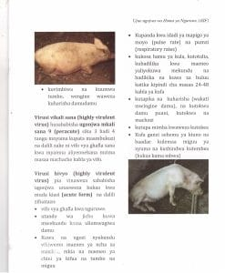 Pict6 247x300 - Ujue Ugonjwa wa Homa ya Nguruwe (African Swine Fever)