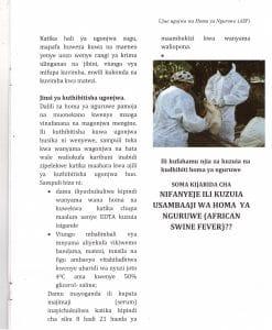 Pict9 247x300 - Ujue Ugonjwa wa Homa ya Nguruwe (African Swine Fever)