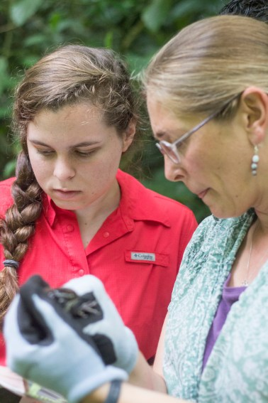 Caley Zuzula and Sandy Neps look for identifying characteristics of a captured bird.