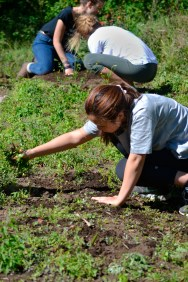 Hannah Cho shakes off loose soil from a handful of weeds. As part of the Environmental Science class, she will spend Saturdays maintaining parts of the UGA Costa Rica farm.