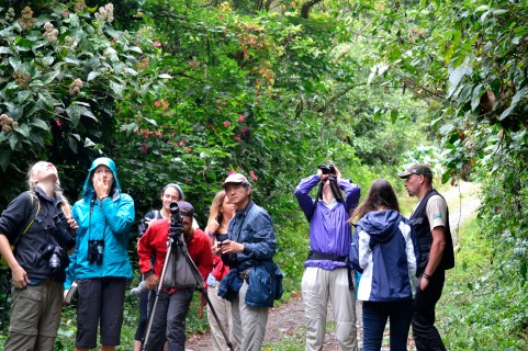 The group of bird watchers gathers around the scope to get a good look at a spotting.