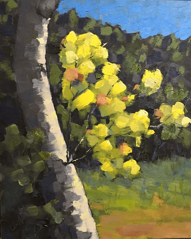Birch_Tree_in_Fall