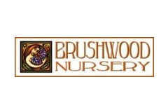 Brushwood Nursery