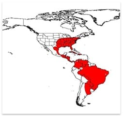Asian Tiger Mosquito range in the U.S.